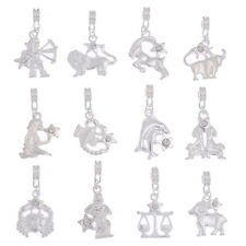 PD: 24 Charm European Versilbert Strass Tierkreis Dangle Beads Anhänger
