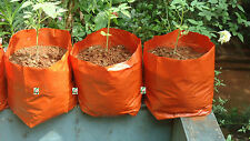 Poly Grow Bags 30 x 28 Cms for Kitchen Terrace Top Balcony Gardening 20 Nos