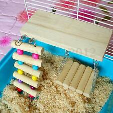 Mouse Parrot Bird Hamster Playground Wooden Ladder Swing Bridge Shelf Toys Cage