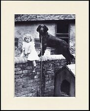 FLAT COATED RETRIEVER DOG AND LITTLE GIRL ON A WALL PRINT MOUNTED READY TO FRAME