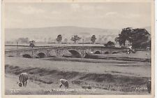View From the Ribble Bridge & Cattle, LONG PRESTON, Yorkshire