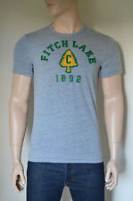 NEW Abercrombie & Fitch Camp Graphic Vintage Tee T-Shirt Grey M
