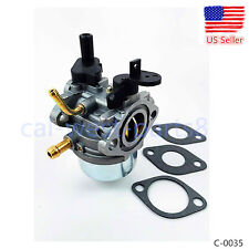 Carburetor fits 801396 Briggs & Stratton Snow Blower  801396 801233 801255 Carb