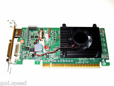 1GB HP Compaq dc7600 dc7700 dc7800 dc7900 SFF Low Profile Half Height Video Card