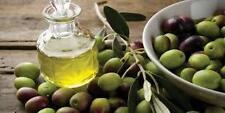olive tree seeds