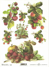 Rice Paper for Decoupage Scrapbooking, Fruits Strawberries Apples A4 ITD R394
