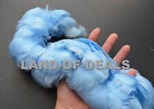240+ Light Blue goose coquille feathers strung bulk wholesale small feather 1 ft