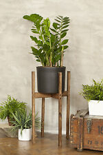 Wooden Plant Display Stand 76cm Tall Indoor Side Hall Flower Furniture New