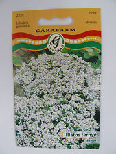 Fragrant Alyssum White Seeds GMO FREE!! Approx 600 Seeds