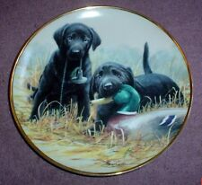 Lovely Franklin Mint Labrador 8 Inch Plate BEGINNERS LUCK