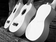 PHOTO COMPOSITION MUSIC INSTRUMENT UKELELE BLACK WHITE COOL POSTER BMP10656