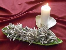 10g Weißer Salbei White Sage Salvia Apiana Indianersalbei