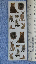 Mrs Grossman BABY WOODLAND ANIMALS Photoessence Stickers