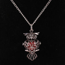 Long Chain Owl Locket Necklace Fragrance Essential Oil Aromatherapy Diffuser NEW