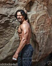 Joe Manganiello 11 x 14 GLOSSY Photo Picture IMAGE #3