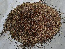 Magic Seed Blend Organic Chia, Flax & Hemp Seeds - 2 oz (1/8 lb) - Our Best Seed