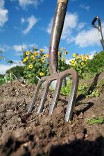 Kit jardin potager lot de + de 1000 Graines legumes BIO semis plantes anciens