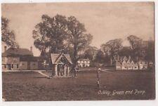 Ockley Green & Pump, Surrey Postcard, B698