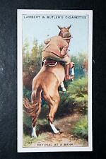 Horse Riding Skills   Refusal to Jump a Bank  Original 1930's Vintage Card  VGC