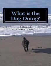What is the Dog Doing?: Present Tense Singular Verbs