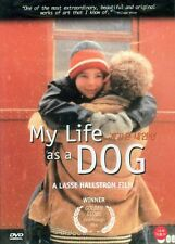 My Life As A Dog (1985) DVD -  Anton Glanzelius (New & Sealed)