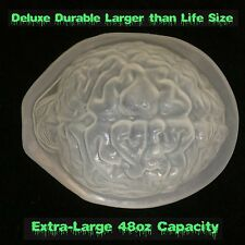 DIY Life Size BRAIN DESSERT JELLO GELATIN MOLD Zombie Food Halloween Horror Prop