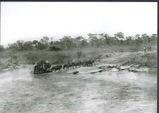 RHODESIA, EARLY PHOTOGRAHS, COPIES,  ZIEDERBURG MAIL COACH CROSSING RIVER