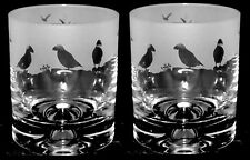 *PUFFIN GIFT* Boxed PAIR WHISKY TUMBLER GLASS with PUFFIN FRIEZE design