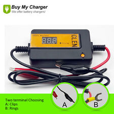 Pulse Battery Desulfator For lead batteries 12v-48v Car Forklift Boat Golf