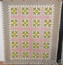 Antique 1800s PA Honeybee Applique Quilt EARLY Mustard Yellow Overdye Green95x82