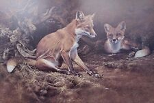 ALAN HUNT, Vixen and Friend, Red Fox S/N Print