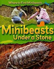 Minibeasts Under a Stone (Where to Find Minibeasts)-ExLibrary
