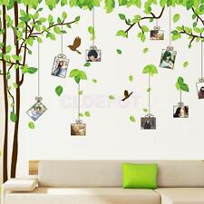 Family Tree Photo Frames Birds Wall Stickers Art Decal Home Decor Removable