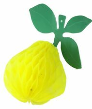 Small Etrog Sukkah Decoration- Sukkot Jewish Holiday Israel Judaism Holy Gift