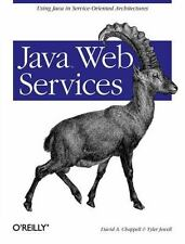 Java Web Services: Using Java in Service-Oriented Architectures David A. Chappe
