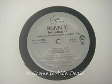 SUNN.Y,Introduction Feat jermaine Dupri & lex Dirty/ Soul Of a Hustler (VG) 12""