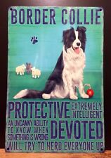 Border Collie Dog Metal Sign With Character Description (30 x 20cm)