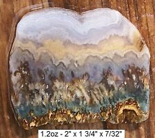 IDAHO - PRUDENT MAN SCENIC PLUME AGATE SLAB VEIN 2 - ABSOLUTELY GORGEOUS!