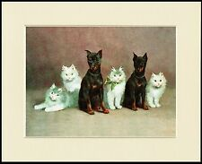 MINIATURE PINSCHER DOGS AND WHITE CATS CHARMING DOG PRINT MOUNTED READY TO FRAME