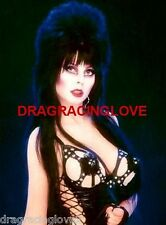 "Cassandra Peterson ""Elvira"" ""Mistress of the Dark"" SEXY"" ""Pin-Up"" PHOTO! #(5b)"