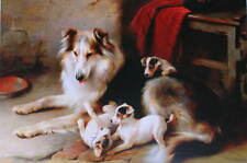 Dog with puppies 2 by Walter Hunt vintage art