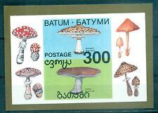 FUNGHI - MUSHROOMS BATUM 1995