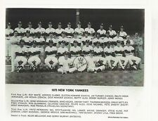 1973 NEW YORK YANKEES TEAM PICTURE - 8 X 10 PHOTO