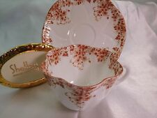 SHELLEY  DAINTY BROWN DAISY   051/B  * *   CUP AND SAUCER  VERY RARE
