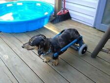 Custom Dog Wheelchair/ Light Weight/ Ready To Roll