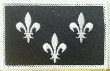 ÎLe-de-france Flag Embroidered Iron-On Patch Military BLACK & WHITE Version