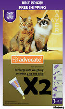 Advocate For Cats 4-8kg Large Cats 6 Pack Flea and Lice Treatment