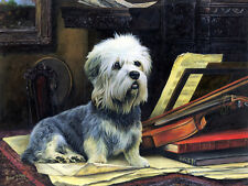 Dandie Dinmont Limited Edition Print by Robert May