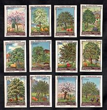 Fruit Trees Kohler Rare 1920 Stamp Card Set Orchard Apple Pear Plum Cherry Fig
