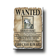 SIBERIAN HUSKY Wanted Poster FRIDGE MAGNET No 1 New DOG